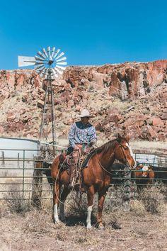 Cowgirl Pictures, Cowboy Images, Cowboy Photography, Equine Photography, Cowboy Horse, Cowboy Art, Real Cowboys, Cowboys Men, Bucking Bulls