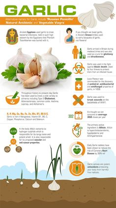 Holistic Health Remedies Garlic , Garlic Supplements , Garlic Tablets, Garlic History, Health Benefits of Garlic. Garlic Health Benefits, Calendula Benefits, Lemon Benefits, Matcha Benefits, Benefits Of Coconut Oil, Benifits Of Garlic, Garlic Supplements, Health And Wellness, Recipes