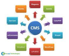 CMS Development Company in India