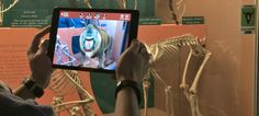 The Smithsonian's New App Brings Museum Skeletons and Fossils To Life