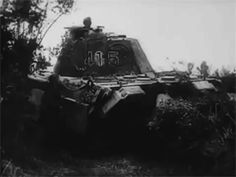 The Panthers of the SS Panzer Division Hitlerjugend spotted in Normandy ready to counterattack, summer of Ww2 Tanks, Thing 1 Thing 2, Panthers, World War Ii, Division, Military Vehicles, Wwii, Beast, German Army