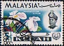 Malay State of Kedah 1965 Orchids Fine Used                       SG 117 Scott 108    Other Asian and British Commonwealth Stamps HERE!