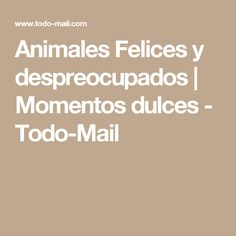 Animales Felices y despreocupados | Momentos dulces - Todo-Mail