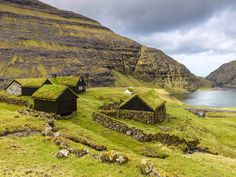 14 Reasons to Visit the Faroe Islands - Northern Lights, grass-roofed houses, and so. many. puffins.