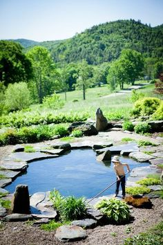 Natural Swimming Pool Water House Pools I love these design on pools. It looks so natural and serene Swimming Pool Pond, Natural Swimming Ponds, Natural Pond, Pool Spa, Swimming Pool Designs, Pool Water, Indoor Swimming, Natural Garden, Outdoor Pool