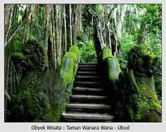 Ubud - Bali #bali