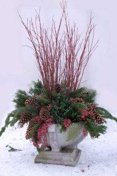 Container Plantings for Wintry Settings - Fine Gardening: Red Twig Dogwood, Boxwood, Shore Pine, Pepperberry Tips, and Sugar Pine Cones Christmas Urns, Christmas Projects, Winter Christmas, Christmas Wreaths, Country Christmas, Christmas Christmas, Christmas Arrangements, Christmas Centerpieces, Outdoor Christmas Decorations