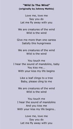 Sam And Cat Theme Song Lyrics : theme, lyrics, Lyrics, Ideas, Lyrics,, Songs