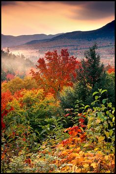 Sunrise along the Kancamagus Highway in autumn, White Mountains, New Hampshire. This highway is known for its views of autumn foliage and is a popular drive in September and October for so-called leaf peeping tourism. Beautiful World, Beautiful Places, New England Fall, White Mountains, Fall Pictures, New Hampshire, Vermont, Belle Photo, Mother Nature