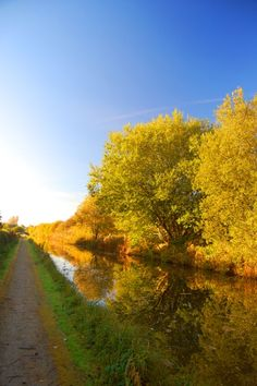 Autumn Canal path, English Countryside