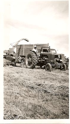 Farm Days In The Fields