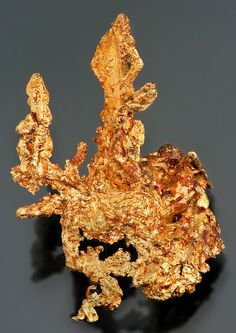 Super lustrous specimen with several Gold Spinel Twins!  The Spinel Twin crystals can easily be seen at the top of this crystalline specimen,  with the largest of the three measuring 1.6 cm in size! Completely composed of  numerous Gold crystals, this specimen displays a beautiful reddish-golden patina,  indicating a Copper component in the mix. The luster and flash are incredible!