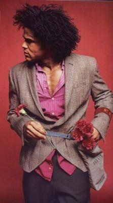 MAXWELL.  I hate carnations, but I love Maxwell.