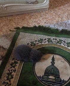 Mecca Wallpaper, Islamic Wallpaper, Quran Quotes Love, Beautiful Quran Quotes, Allah Quotes, Cat Aesthetic, Beige Aesthetic, Islamic Quotes On Marriage, Cute Cats