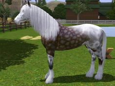 A dapple grey horse from the  nursery rhyme