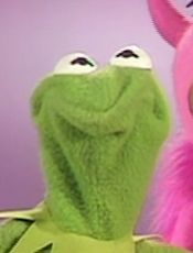 kermit the frog scrunched face