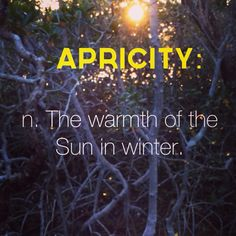 Apricity - the warmth of the sun in winter - Cool words - Unusual Words, Weird Words, Rare Words, Unique Words, Powerful Words, Unusual English Words, Interesting Words, Fancy Words, Big Words