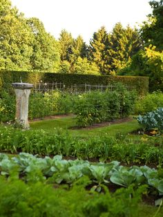 A very aesthetically pleasing veggie garden. The garden beds are easy reachable and even on the grass in between you can rotate chicken with a portable chicken coop.