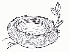 Birds Nest Coloring Pages Printable - Coloring Pages For All Ages