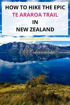#Hiking the Te Araroa Trail in New Zealand #shimonfly