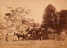 """Georgina Thorburn, Mrs Jessie Thorburn, Kenneth McKenzie and Tot Thorburn outside Fairfield, Cambewarra, 12 May 1893; photographers Morse Bros; albumen print cabinet photograph. June Wallace papers, Caroline Simpson Library & Research Collection, Historic Houses Trust of NSW. Tot Thorburn recorded the taking of the photograph in her diary for Friday 12 May 1893: """"Lovely day. We had the house photographed, Uncle & I standing together & Mother and Geo. in the buggy with Lottie""""."""