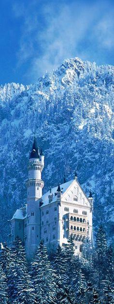Neuschwanstein castle in the winter , Germany