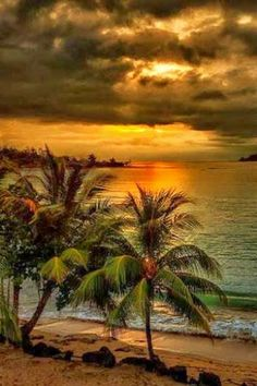 Palm trees edge of ocean sunset cloudy Nature Pictures, Cool Pictures, Beautiful Pictures, Travel Pictures, Pictures Images, Beautiful Sunrise, Beautiful Beaches, Exotic Beaches, Sea And Ocean