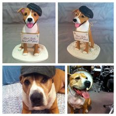 Pitbull wedding cake topper wearing cap by Laurie Valko, via Flickr
