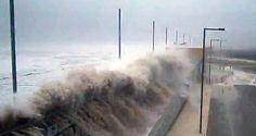 Linha de financiamento aos negócios afetados pelo mar | Algarlife