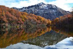 lago lolog otoño - Buscar con Google
