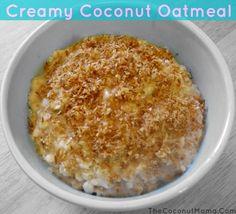 porridge morning oatmeal oatmeal yogurt yogurt fruit paleo gluten free ...