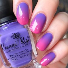 Purple to pink gradient using polishes from 💗💜 . This gradient was so easy to make! The polishes are really pigmented so… Love Nails, Pink Nails, Gel Nails, Lemongrass Oil, Lemon Grass, Nail Colors, Nail Designs, Nail Polish, Nail Art
