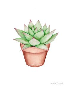 Cactus painting Juicy set of watercolor art. Illustration of potted cactus. Modern room with floor decoration - Art Painting Succulents Drawing, Cactus Drawing, Cactus Painting, Plant Painting, Plant Drawing, Cactus Art, Painting Art, Garden Cactus, Cactus Decor