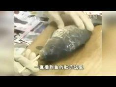Китайский способ потрошить рыбу не вспарывая брюхо - YouTube
