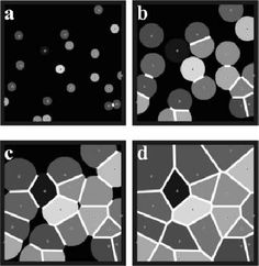 Fig. 2. The Avrami-Johnson-Mehl method for constructing Voronoi diagrams in 2D. Figures a.-d. presents snapshots from a small graphical simulation.