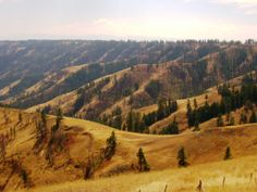 Blue Mountains, Hells Canyon, Oregon