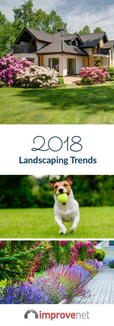 Each year, the landscaping trends change. It's time to start planning your next garden and landscaping projects. From a personal garden retreat to backyard water features, here are the 2018 landscaping & garden trends. Next Garden, Backyard Water Feature, House Architecture, Growing Plants, Water Features, Curb Appeal, Garden Landscaping, Landscapes, Things To Come