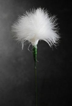 """Feathers White Marabou Powder Puff Feathers on 20"""" Wire Stem"""