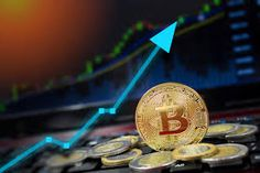 Ready to own some cryptocurrency. Welcome to Bitcoin Sales Australia the best and the leading platform to buy/sell bitcoins in Australia. Buy Btc, Buy Bitcoin, Cryptocurrency, Australia, Sign, Create, Stuff To Buy, Australia Beach