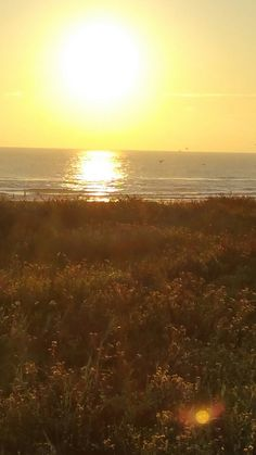 Beautiful beaches of South Padre Island Texas!