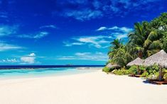 Nature landscape maldives resort white sand beach sea palm trees tropical island summer wallpaper and background Tree Sunset Wallpaper, Beach Wallpaper, Of Wallpaper, Nature Wallpaper, Summer Wallpaper, Wallpaper Ideas, Maldives Beach, Maldives Resort, Beach Resorts