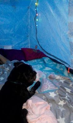 Camping  Summer Date
