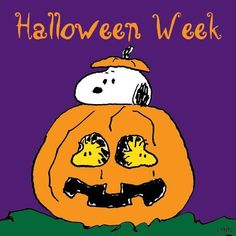 Peanuts - Woodstock and Snoopy.Linus is ready. Snoopy Halloween, Charlie Brown Halloween, Great Pumpkin Charlie Brown, Halloween Week, Halloween Season, Holidays Halloween, Happy Halloween, Halloween Jokes, Halloween Pictures