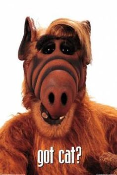 Alf-My all time Fave Show