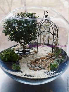 If you are looking for Indoor Fairy Garden Ideas, You come to the right place. Below are the Indoor Fairy Garden Ideas. This post about Indoor Fairy Garden I. Indoor Fairy Gardens, Mini Fairy Garden, Fairy Garden Houses, Miniature Fairy Gardens, Garden Cottage, Garden Types, Succulent Terrarium, Succulents Garden, Fairy Terrarium