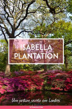 Isabella Plantation - Um jardim secreto em Londres