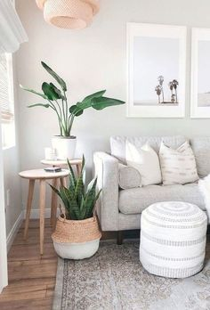 Plants at Afloral Low-maintenance house plants? Save time and find real-touch fake house plants at . Save time and find real-touch fake house plants at . Living Room Interior, Home Living Room, Living Room Decor With Plants, Living Room Apartment, House Plants Decor, Coastal Living Rooms, Plant Decor, Fake Plants Decor, Living Room Side Tables