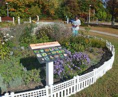 Bringing Butterflies to Martha Jones Elementary School | Ecological Landscape Alliance
