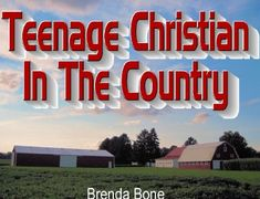 Teenage Christian In The Country by Brenda Bone http://www.amazon.com/dp/B00FVGVZ4I/ref=cm_sw_r_pi_dp_VXG2wb12G9R3S