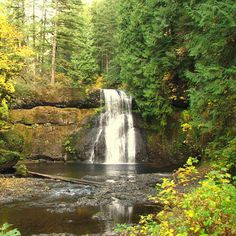 Silver Falls State Park, OR Distance from Portland: 58 miles, 1.20-hour drive Why it made our list: If you ever need proof that Oregon is just a cold Hawaii, visit this easy 10 mile hike with 10 huge waterfalls. The lush canyon is formed by lava flows from 15 million years ago, and you can look up at the rims of the trail to see where the lava stopped and the soft rock beneath eroded; basically, it created launching pads for the area's roaring rivers.